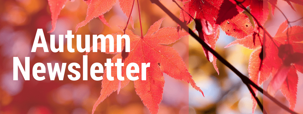 Reiki School Autumn Newsletter